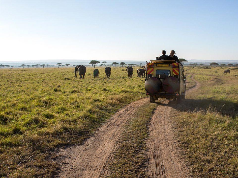 magical Kenya Africa safari capital