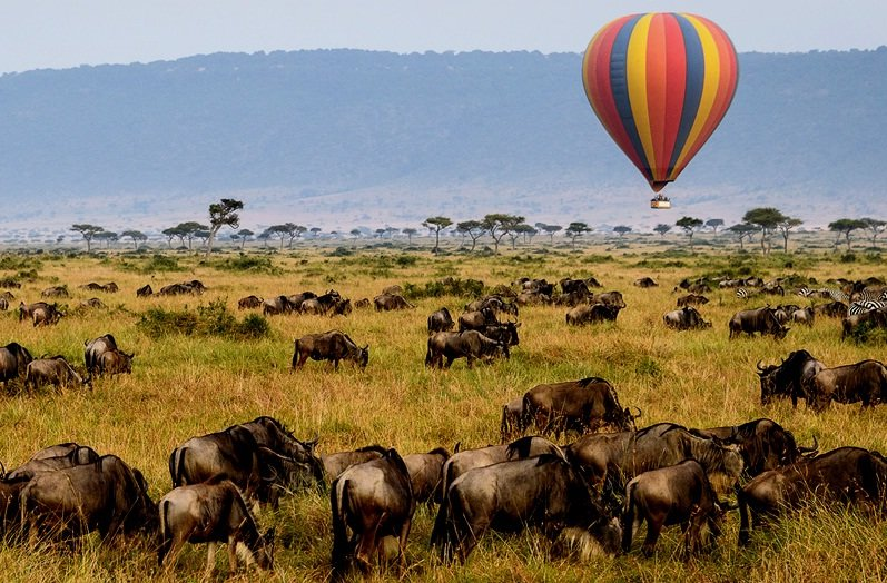Visitors enjoying the endless plains of Serengeti National Park