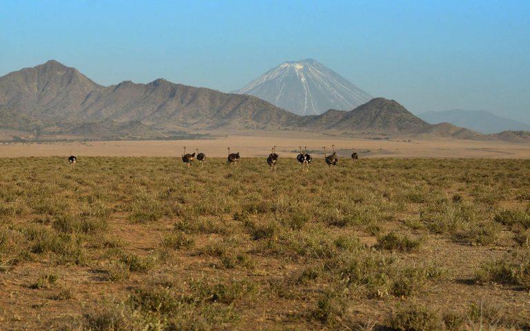 Gol Mountain