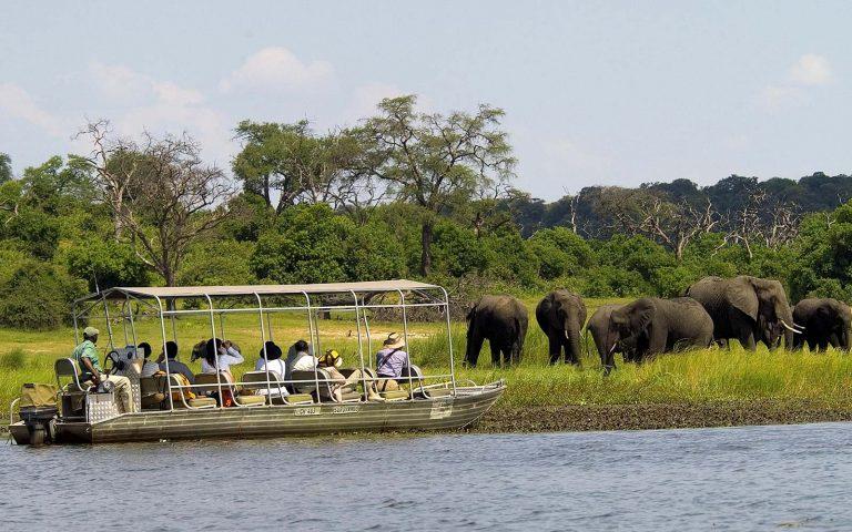 Boat Safaris  in Chobe