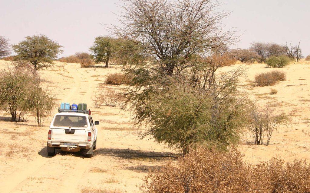 Kgalagadi Transfrontier Park, The Nossob 4x4 Eco Trail