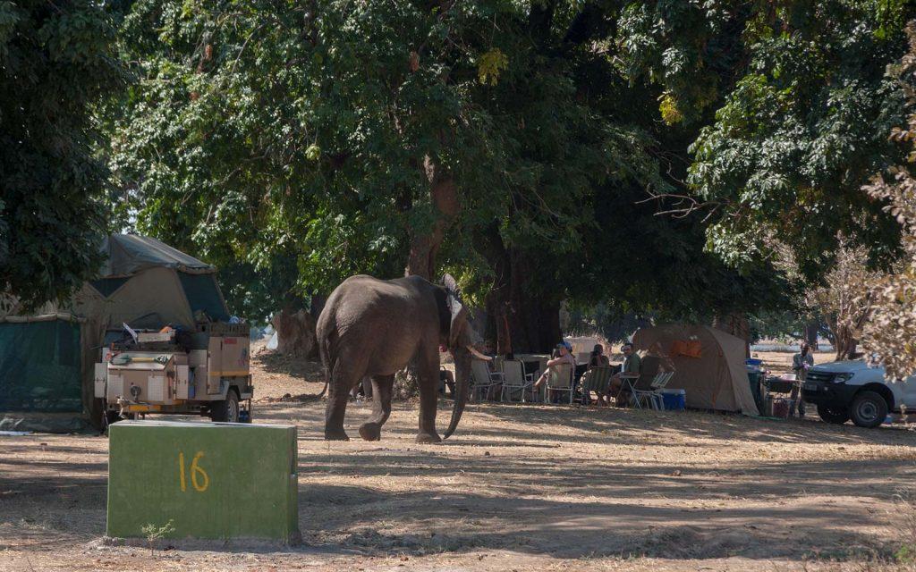 Nyamepi Campsite