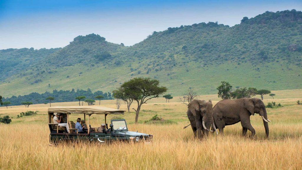 Masai mara game drives