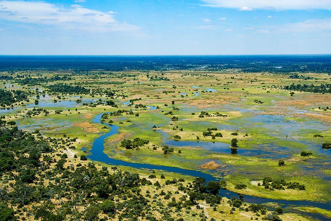 okavanga delta fly in safari